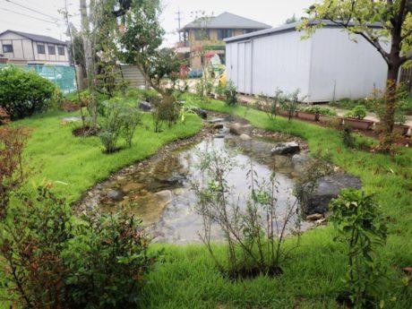 池の様子。 吐水口とは25cmほどの高低差です。