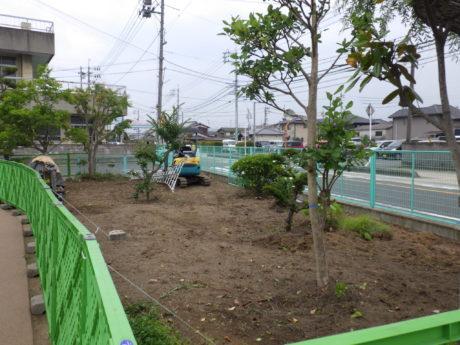 既存樹木の撤去・整地